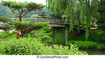 Bridge crossing over a flowing river leading to a Japanese Garden