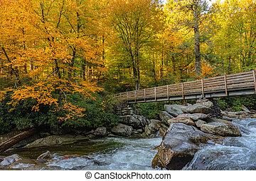 Bridge Disappears Into Bright Fall Colors