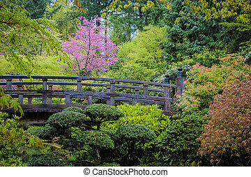Bridge in a Japanese garden