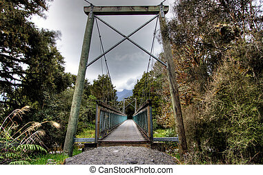 Bridge in a New Zealand rainforest
