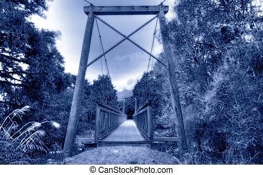 Bridge in a New Zealand rainforest