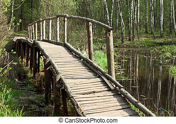 bridge in a spring forest