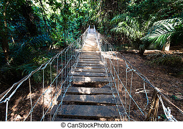 Burkina faso, hanging suspended bridge in the jungle.