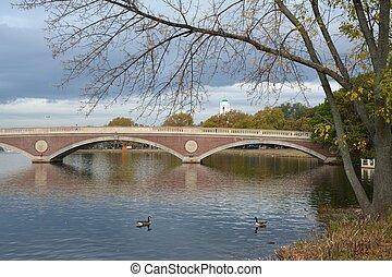 Bridge in Cambridge