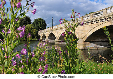 Bridge in London with Colorful Flowers