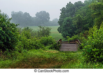 Bridge in Meadow - A wooden bridge on a foggy morning in...