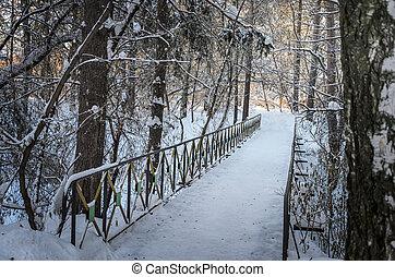 bridge in snowy park