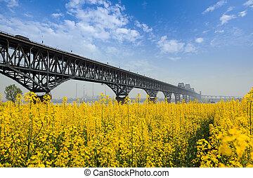 bridge in spring