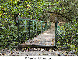 Bridge in the autumn forest on a sunny day.