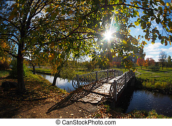 bridge in the autumn park