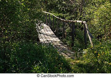 Bridge in the Backwoods - Bridge over a rivulet in the...