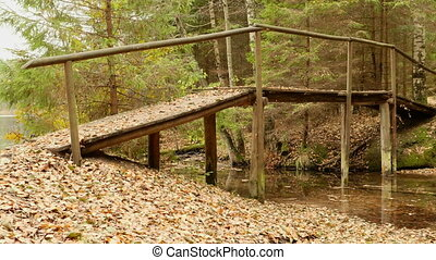 Bridge in the Forest. Autumn daytime. Smooth dolly shot