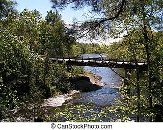 bridge in the wood