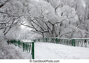 Bridge in winter park, a horizontal picture