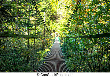 Bridge on the hiking route in the Slovak Paradise