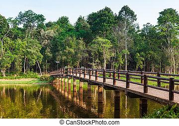 Bridge on the lake. - Bridge on the lake in the park.