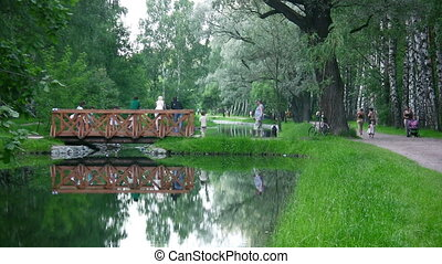 bridge on water in park