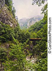 bridge over a mountain river in the Carpathians, Romania
