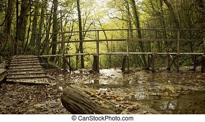 Bridge over a river in the wood