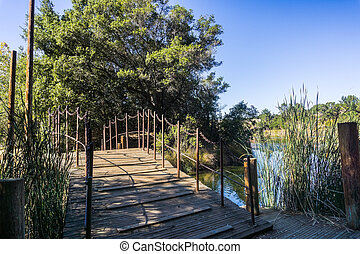 Bridge over Boronda lake in Palo Alto Foothills Park, San Francisco bay area, California