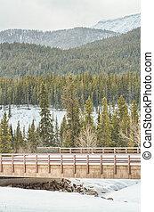 Landscape of a bridge over Cat Creek in the Highwood Pass, Alberta, Canada.