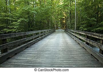 Bridge over Little Pigeon River, GSMNP - Bridge over Little...