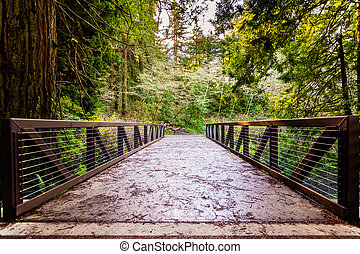 Bridge over Purisima Creek in Purisima Creek Redwoods Preserve, Santa Cruz mountains, San Francisco Bay Area, California