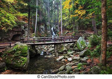 Bridge Over Stream in Autumn Mountain Forest