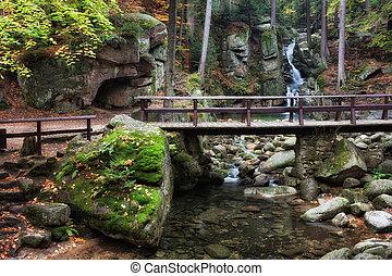 Bridge Over Stream in Mountain Forest