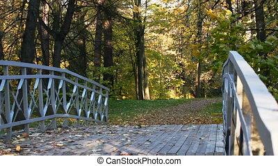 Bridge over the creek and defoliation
