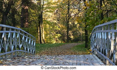 Bridge over the creek and leaf fall
