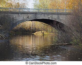 bridge over the river in autumn