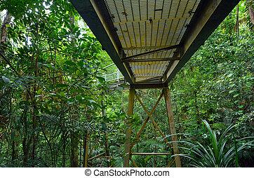 Bridge path in Australia