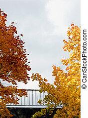 Bridge railing in autumn