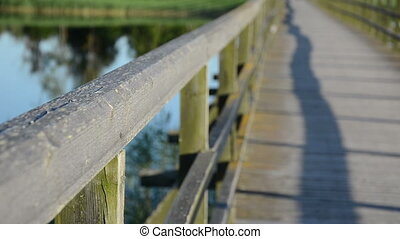 bridge railing lake water