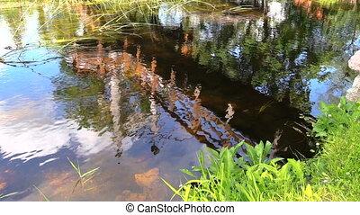 Amazing bridge reflections on streamy river water. People walk. Shot on Canon XA25. Full HD 1080p. Progressive scan 25fps. Tripod.