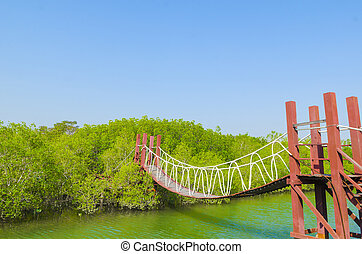 Bridge to Nature with blue sky