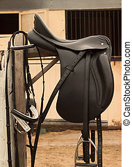 Bridle and horse saddle