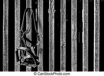 Bridle in Black and White