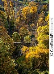 bridzs, öreg, felett, ősz, folyó parkosít
