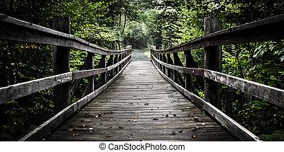 bridzs, gyalogló, limberlost, virginia., nemzeti nyom, shenandoah, liget