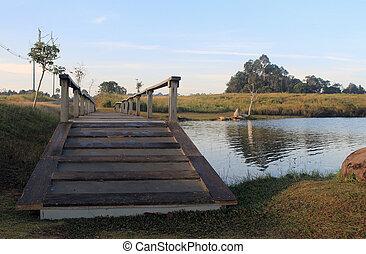 bridzs, nemzeti park, tó, erdő, gyalogjáró