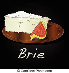 Brie cheese vector  isolated