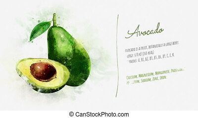 Brief information about Avocado - A video card with...