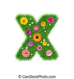 brief x, gemaakt, van, gras, en, kleurrijke bloemen, lente, concept, voor, grafisch ontwerp, collage
