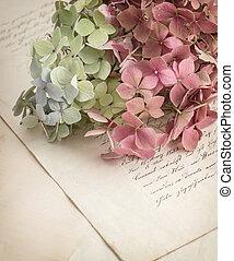 briefe, altes , blumen, liebe, kleingarten