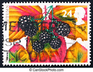 briefmarke, 1993, usa, brombeeren
