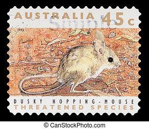 briefmarke, gedruckt, in, der, australia, shows, düster,...