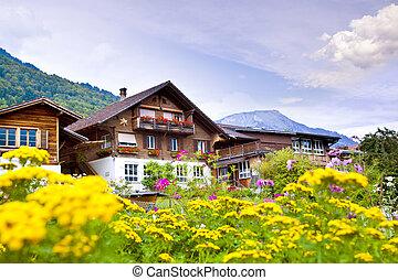 brienz, villaggio, in, svizzera