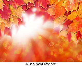Bright autumn background. Red fall maple leaves and abstract bokeh light